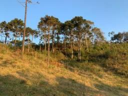 Terreno 2 hectares em Urubici/ Chácara em urubici