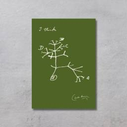 Placa Decorativa - Biologia Evolução - I think, Darwin Tree - Verde