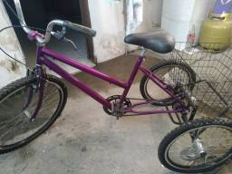 Bicicleta para feira