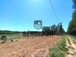 Título do anúncio: Área de terra com 2.500m² a 1km do asfalto - Triunfo