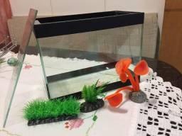 Aquario com Decoração para Beta ou peixes pequenos