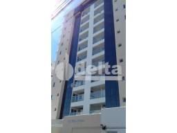 Apartamento para alugar com 2 dormitórios em Patrimonio, Uberlandia cod:625518