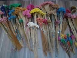 Flores Secas para Decoração, Casamentos, Chá de Bebê, Convites de Casamentos