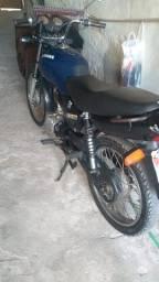 Fan 2005