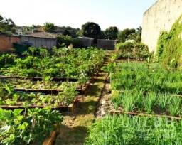 Terreno residencial para venda bairro trevo bh