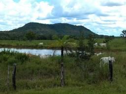 8437 | Fazenda à venda com 1 quartos em Zona Rural, Araguaína