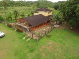 Fazenda em Roraima a venda na BR 174