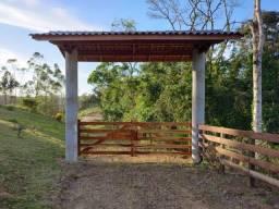 Título do anúncio: Sítio de 42.000m² com casa, lagoa, galpão, plantações, pasto em São João do Itaperiú