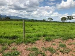 Fazenda 1.200 hectares Jangada Mato Grosso