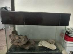Aquario usado 100 litros com pedras e tampa superior