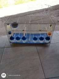 Gaiola criadeira para pássaro