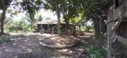 Chácara próxima Balneário tabokinha ótimo espaço para quem procura um lugar sossegado