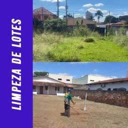 Roçagem e Limpeza de Áreas e Lotes