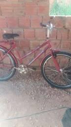 Bicicleta poti grande