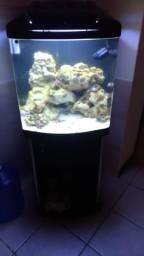 Vendo aquario boyu TL-550 128lts