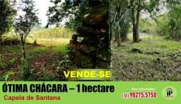 Hectare de terra em Capela de Santana / whats 51 982755750 Daniel Ribeiro