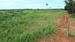 Fazenda 1.137 Hectares Terra de Cultura - Alta Floresta - MT