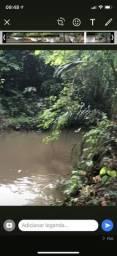 Vendo chácara 6 mil m² muita água/mata/cercada