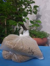 Fertilizante importado osmocote