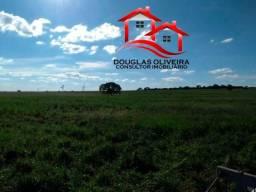 Fazenda na região de Sta Vitória/ Campina Verde MG