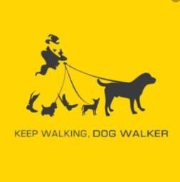 Passeio/cuidados com seu pet (pet walker/sitter) - Canto da Lagoa