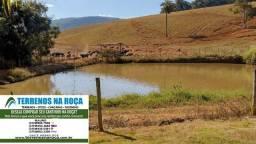 Título do anúncio: Fazenda em Pitangui/MG 75 HA completa para exigentes