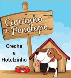 Creche e Hotelzinho Cantinho da Penélope