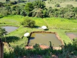 S250 - Lindo sítio tipo pesqueiro com três lagos para criação