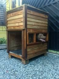 Casa cachorro madeira