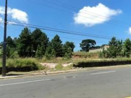 Terreno para alugar com 3 dormitórios em Jardim carvalho, Ponta grossa cod:L708