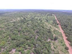 Fazenda com Potencial Para Agricultura em Paraiso do Tocantins