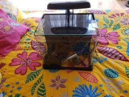 Título do anúncio: Mini Aquario Boyu Modelo Me-350 Led 19l Preto 110v