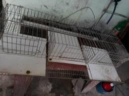 Gaiola para aves vom 3 compartimentos