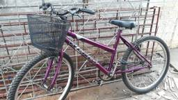 Bicicleta wendey