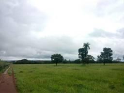 Fazenda dupla aptidão em Paraiso do Tocantins