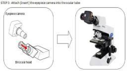 Câmera Sony tipo Microscópio C - Marca do cmos Sony - Software Incluso