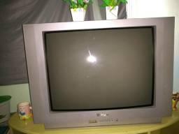 Vendo 2 televisores de 29 polegadas da marca philco e LG de controle remoto