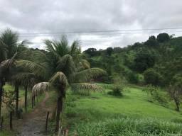 Sitio com 4 hectares