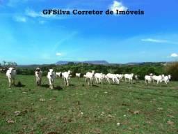 Sítio 11 Alqueires com Rio próximo a cidade e asfalto Oportunidade Ref. 135 Silva Corretor