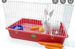 Vendo gaiola de coelho