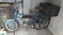bicicleta carguiera