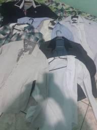 Lote  de camisas manga e camisas de manga curta