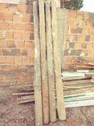 Palanques eucalipto tratado