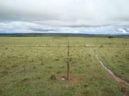 Fazenda 2.200 Hectares Dupla Aptidão - Agua Boa - MT