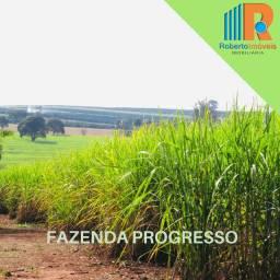 Fazenda Progresso à venda em Conchal