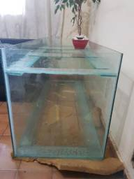 Vendo aquario grande urgente