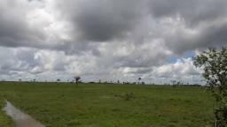 Ótima fazenda med. 3.900 hectares na Br 317