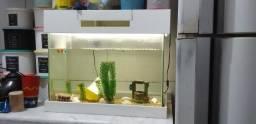 Vendo um aquário com lâmpadas de led