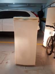 Freezer Vertical Electrolux F170