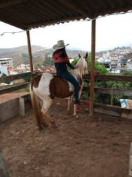 Título do anúncio: Vendo cavalo quarto de milha